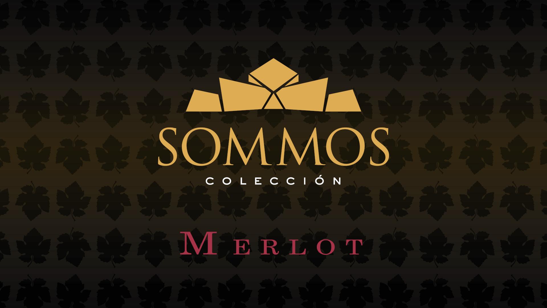 SOMMOS Colección - Merlot