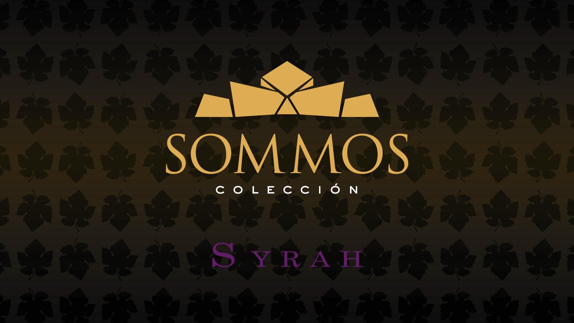 SOMMOS Colección - Syrah